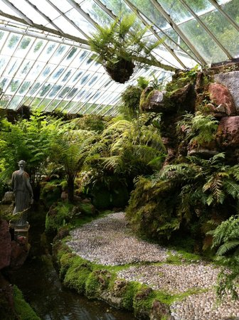 Ascog Hall Gardens and Victorian Fernery : Bliss