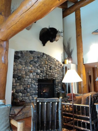 Moraine Lake Lodge: Library