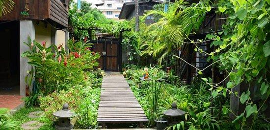 Chiang Mai Summer Resort : Grounds