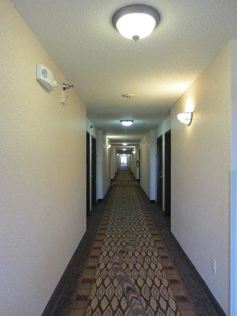Comfort Inn & Suites Custer: Corridor
