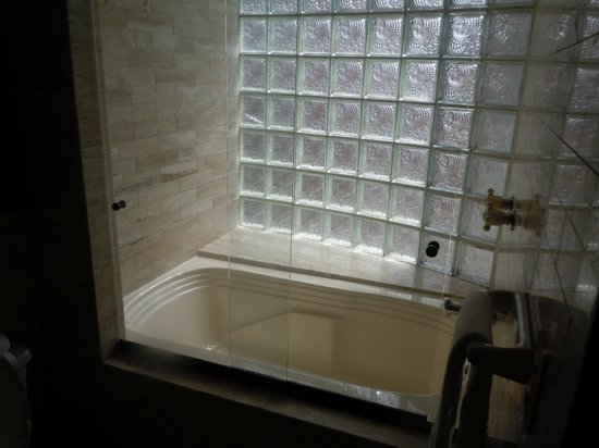 Travelers Suites Gold : Baño