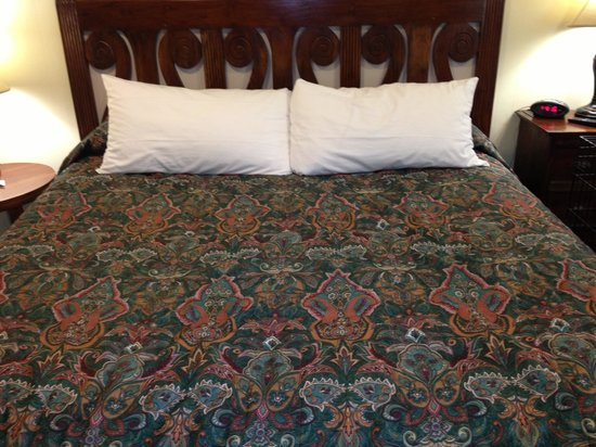 Green House Inn: The normal bedspreads are white, if you bring a dog then you get this color. Genius!