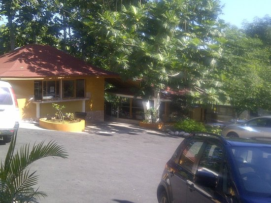 Palm Bay Guest House : Food and Bar Area