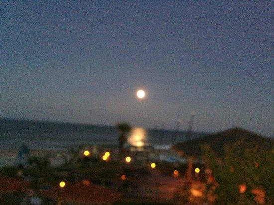 619 Ocean View: A full moon