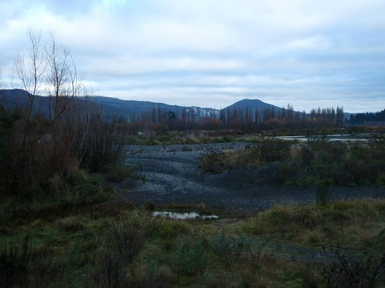 Tongariro Lodge: View of the river from the Lodge