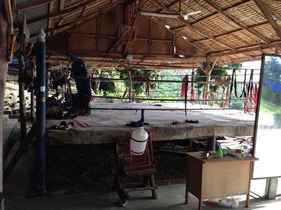 Horizon Muay Thai Boxing Camp