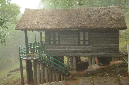 K Gudi Wilderness Camp: Log hut
