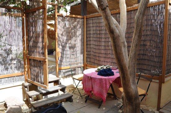 Cactus B&B : Private patio