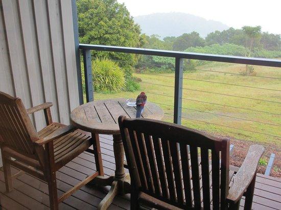 奧萊利斯雨林休閒飯店照片