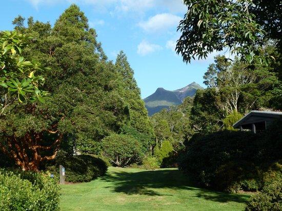 นิวพลีมัท, นิวซีแลนด์: Williams Walk looking towards Mt Egmont
