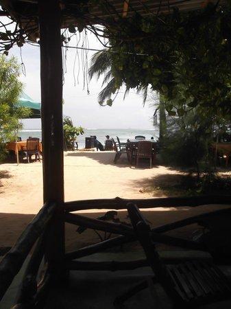 Tartaruga Hotel & Beach Restaurant: Aussicht von unserer Terrasse