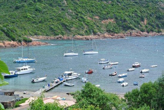 Golfo di Porto, Girolata e Riserva di Scandola: le port de Girolata