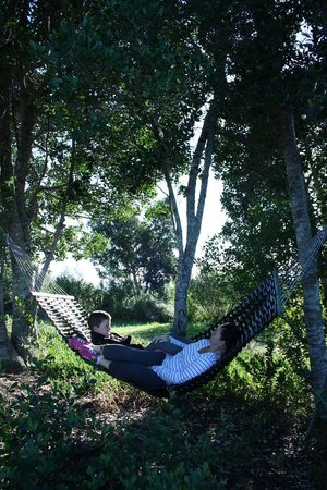 African Array Lodge: Relaxing on the hammock