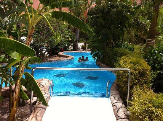 Playacalida Spa Hotel: Piscina río