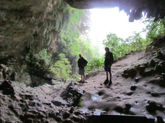 Oparara Kahurangi National Park Guided Tours: Oparara Arch entrance