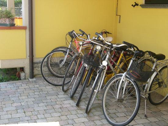 B&B Nonna Alda : le bici!