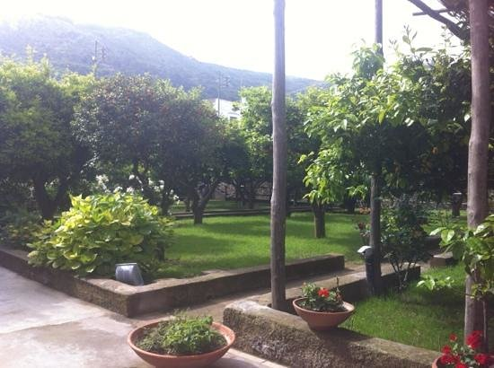 Angolo bar in giardino picture of casa mariantonia for Angolo bar per casa