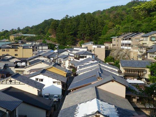 Ryoso Kawaguchi: Vue du ryokan (au centre avec vitres de la bibliothèque au 2ème étage) depuis la pagode