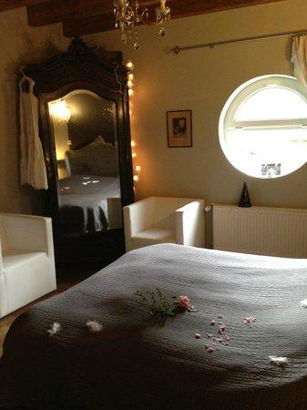 Domaine Du Moulin : chambre nuit étoilée- lit 160 par 200