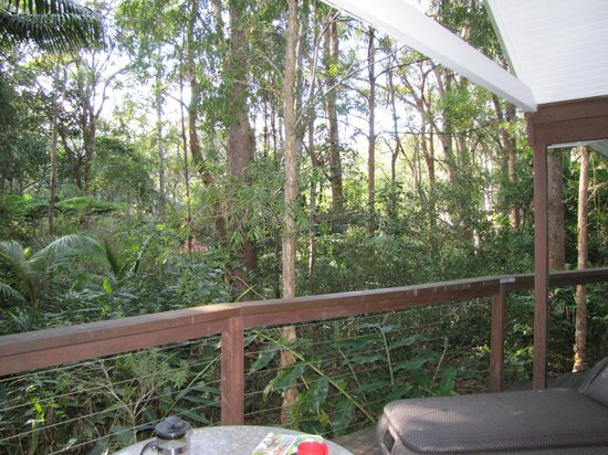 Songbirds in the Forest - Rainforest Retreat: Songbirds Villa