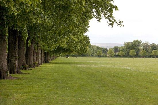 Cardiff Caravan Park: Pontcanna Fields