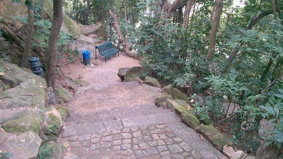 Parque Municipal de Mong-Ha