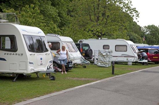 Cardiff Caravan Park: Caravans