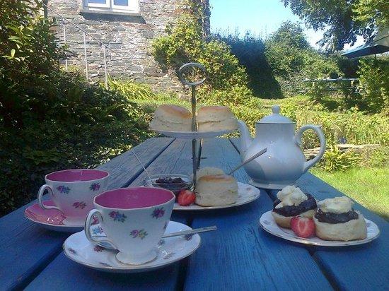 Viv's Tea Garden: Cornish Cream Tea