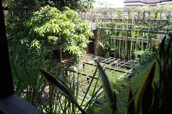Rumah Turi: lush mini garden