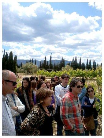 Ruta de Microvina del Celler la Muntanya: Vita de Técnicos de Turismo, profesionales del sector y propietarios de establecimientos