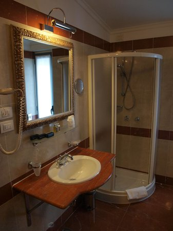 BEST WESTERN PLUS Hotel Felice Casati: Shower and sink