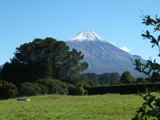 Mount Taranaki : Mt Egmont from main road looking North