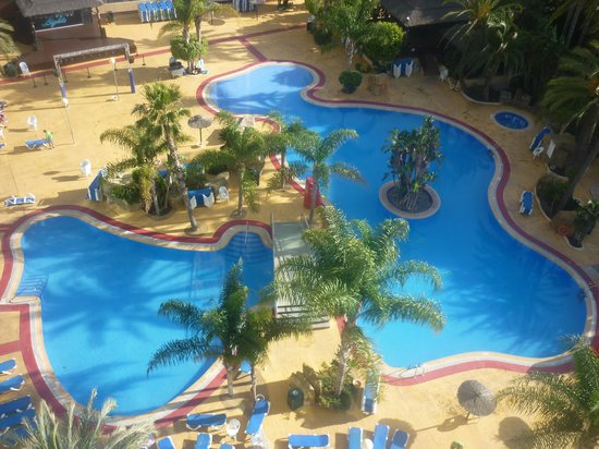 Hotel Flamingo Oasis: Great pool