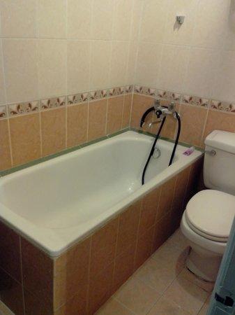 Friendly Hotel & Travel: bathroom