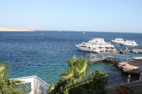 Lido Sharm Hotel: View from the sundeck