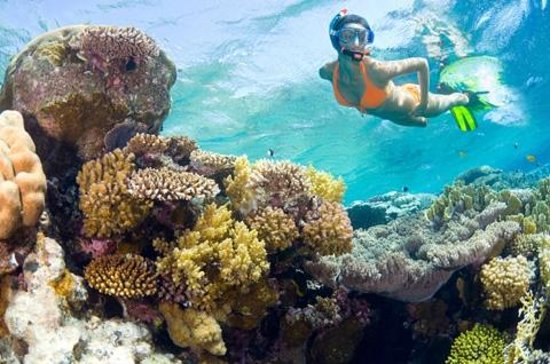 Ocean Vue Adventures Day Tours Key West Fl Top Tips