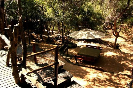 Off Beat Safaris & Bush Lodge : View from decked bar