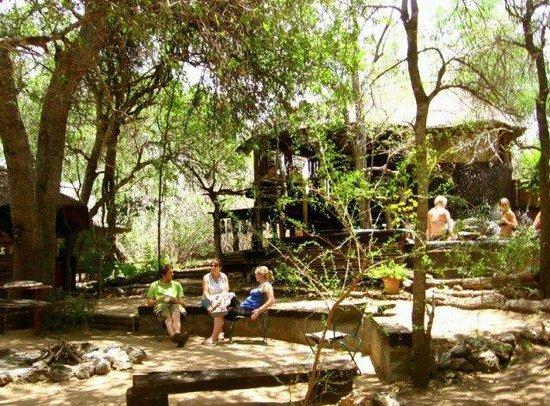 Off Beat Safaris & Bush Lodge : Main area