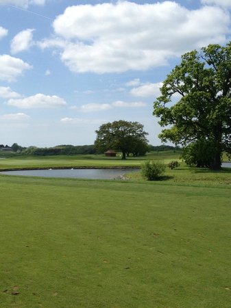 The Oxfordshire Golf Club & Hotel: approach to the 8th