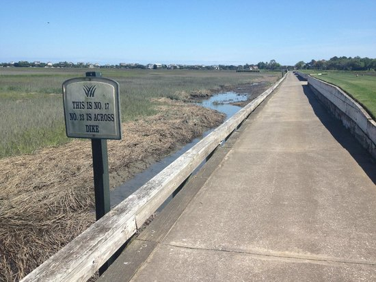 Pawleys Plantation Golf and Country Club: cart path between holes 13 and 17