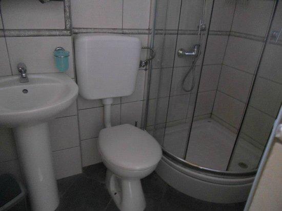 Pansion Rose: private bathroom