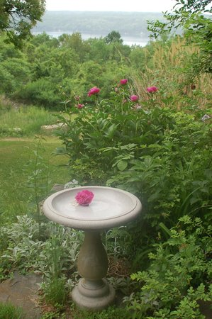 The Lakefront Inn: Bird bath on patio outside courtyard room