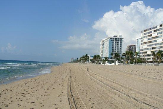 Hilton Fort Lauderdale Beach Resort: fort lauderdale beach