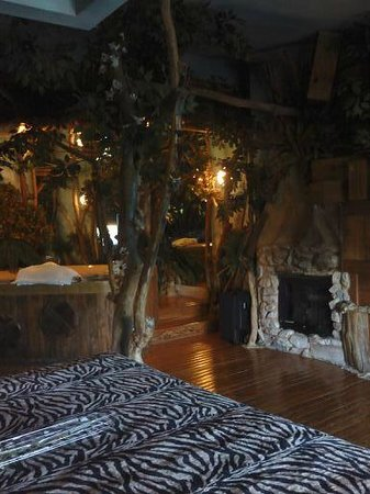 Feather Nest Inn: treehouse room