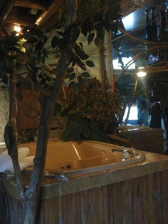 Feather Nest Inn: hot tub area