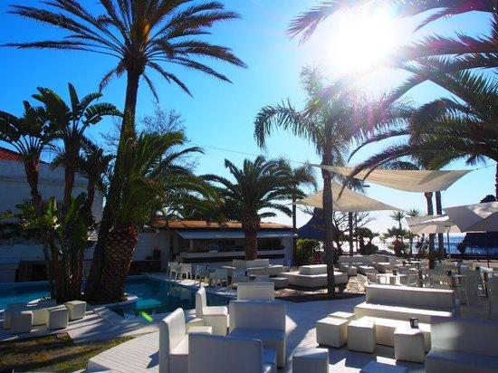 Sicilia's Cafe de Mar: Panoramica interno del Cafe de Mar
