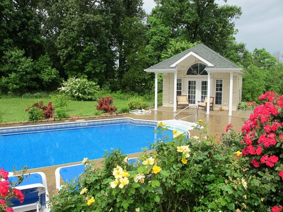 Southern Grace Bed and Breakfast: Pool