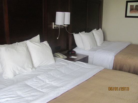 Comfort Inn Boonville: Rooms with two Queen Size Beds