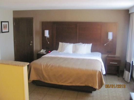 Comfort Inn Boonville: King Suite