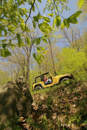 Allegheny National Forest Visitors Bureau: Scenic Drives